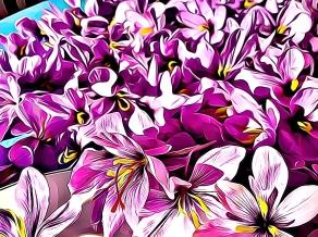 saffron-chapter-13-cartoon